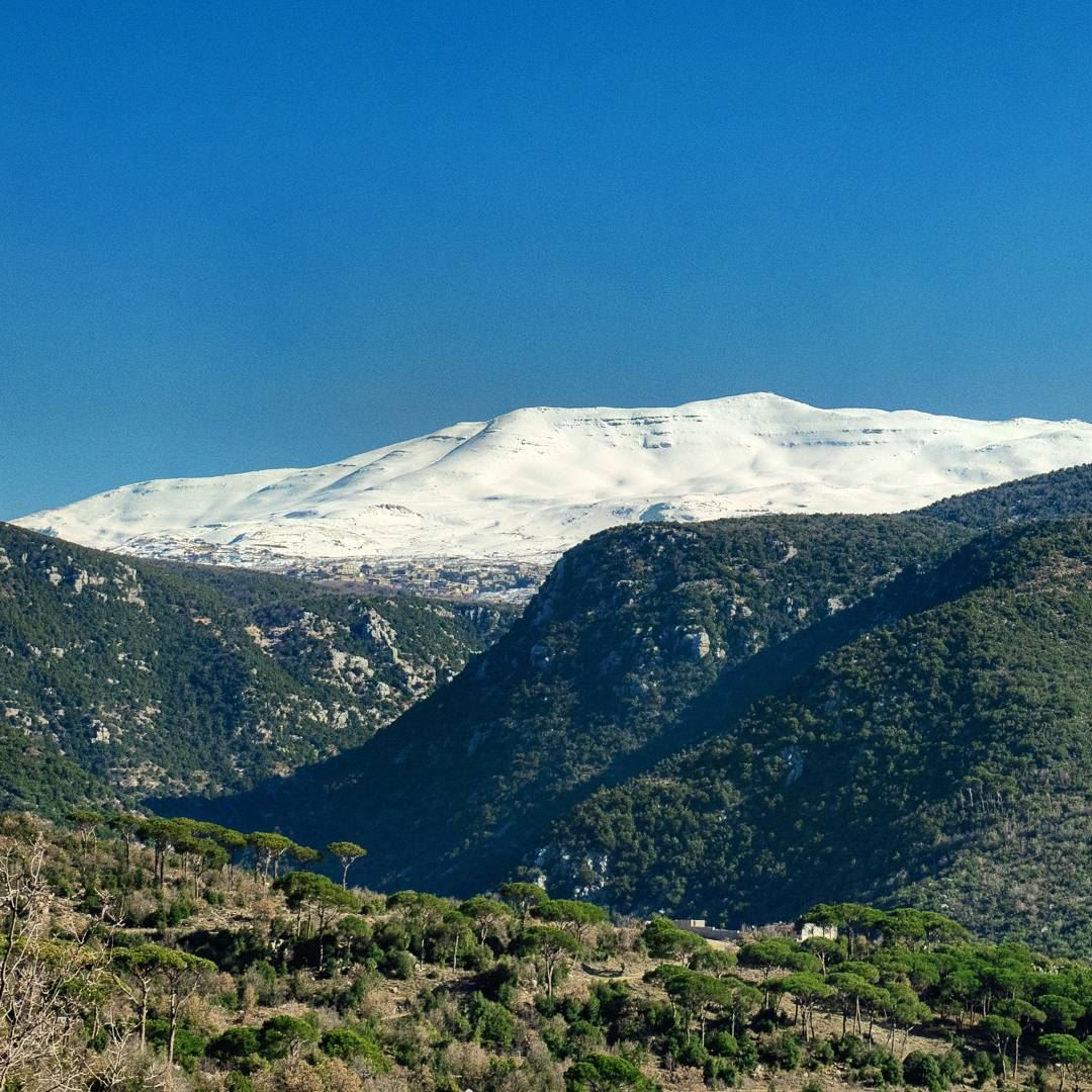 Image result for image of mount Lebanon