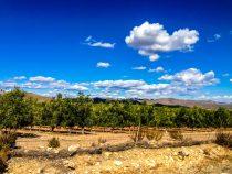 5 Tipps für Bilder vom Andalusien Urlaub