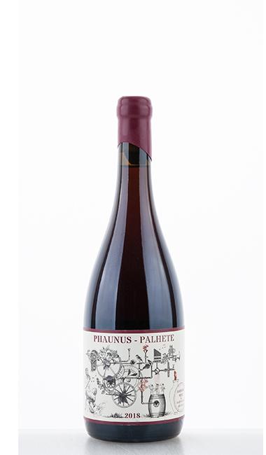 Phaunus Palhete Amphora 2018 - Aphros Wine