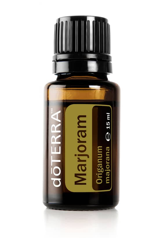 Marjoran  Origanum majorana