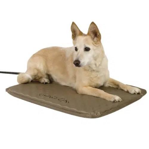meilleurs tapis chauffant pour chien