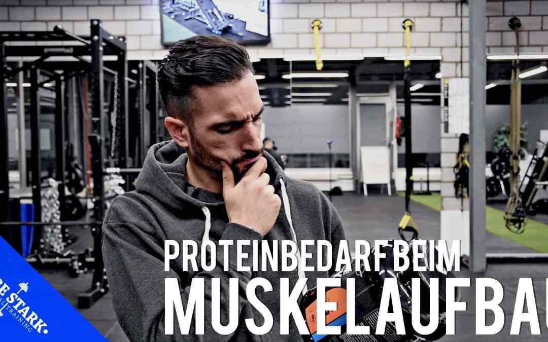 Proteinbedarf beim Muskelaufbau