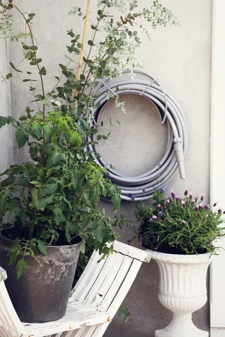 garden glory simple