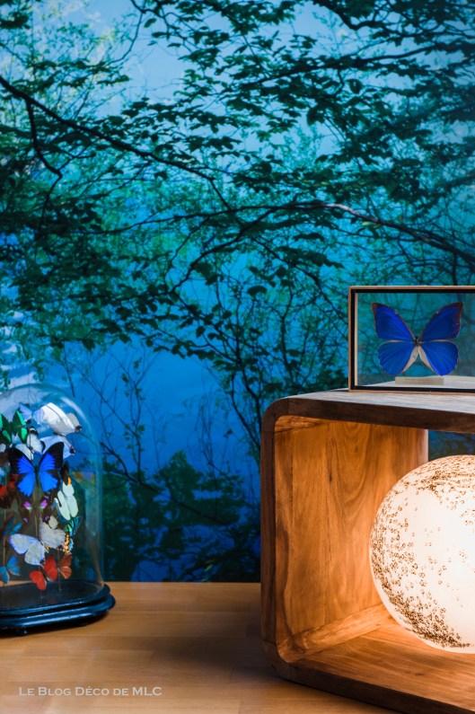 Déco-bleue-papillons-lune-univers-MLC