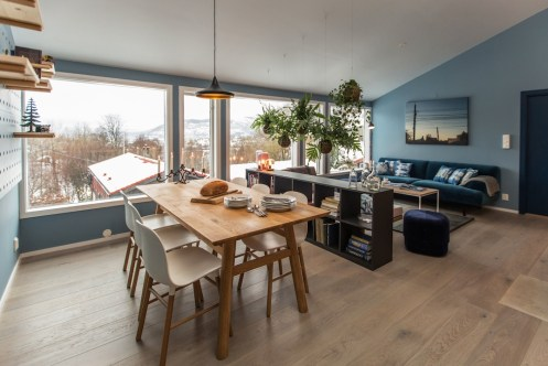 salon-interieur-scandinave
