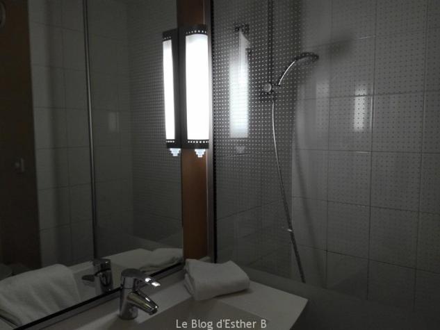 salle de bains hotel ibis provins