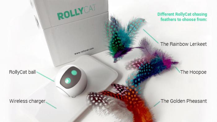 rollycat un objet connect pour un chat en bonne sant. Black Bedroom Furniture Sets. Home Design Ideas