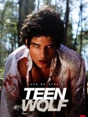 Affiche de la série TEEN WOLF - Saison 1