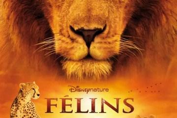 Livre Hachette Cinéma du film FÉLINS