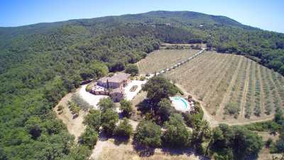 Tuscan villa for holiday and wedding  villa Le Bolli Siena