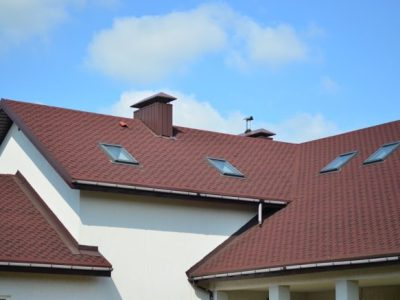 élément porteur d'une toiture