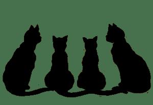 halloween-black-cat-clip-art-uex4axt