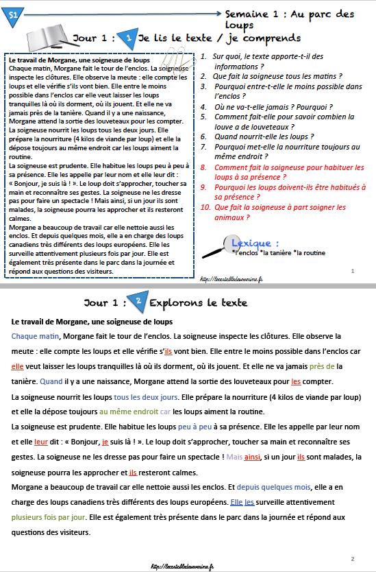 Grammaire Picot CE2/CM1/CM2 année 3 maîtresse séverine