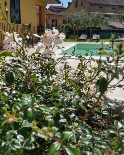 Le case del cuore - Case vacanza ad Assisi
