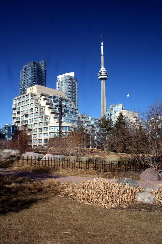 Toronto… sous le soleil !