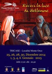 Presepe Tricase 2014