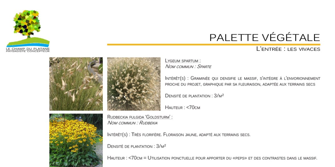 05-APD-palette-vegetale-amenagement