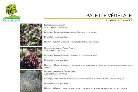 07-APD-palette-vegetale-jardin
