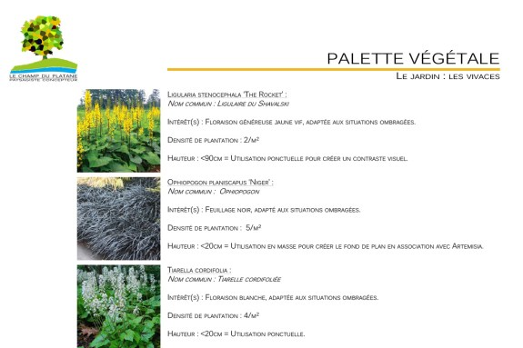 07-APD-palette-vegetale-paysage