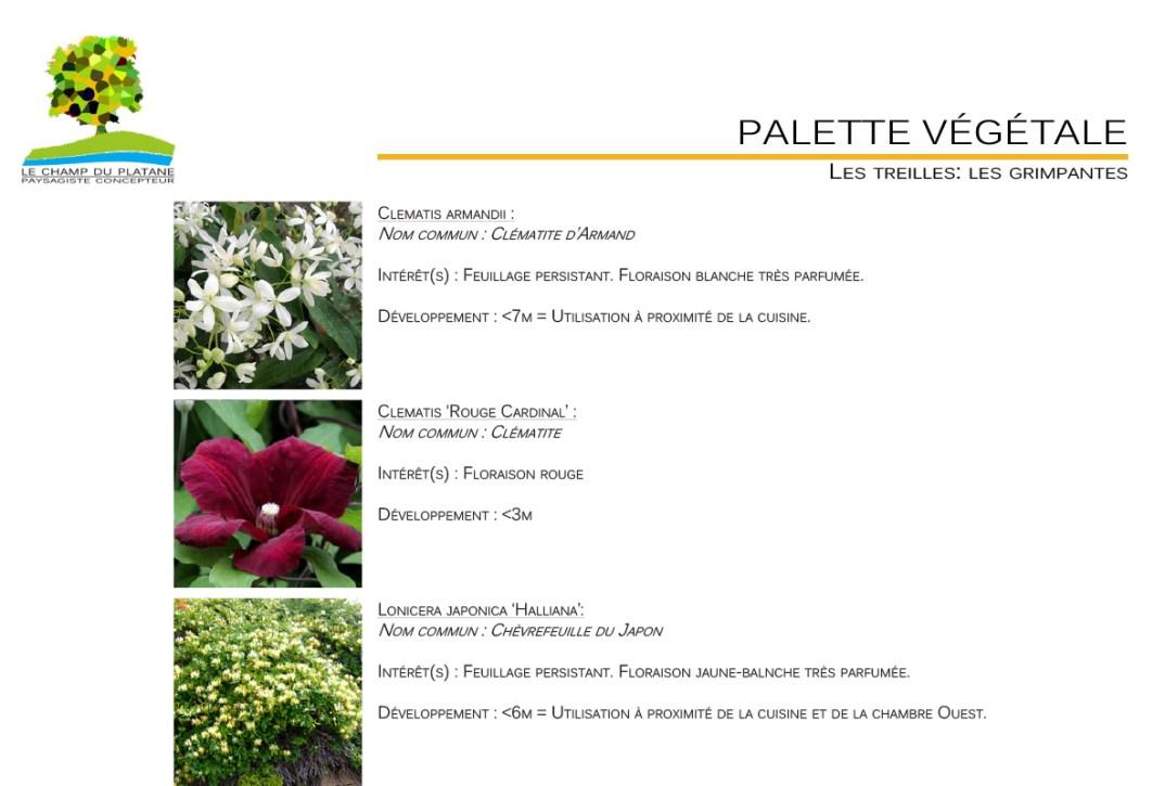 09-APD-palette-vegetale-esterieur