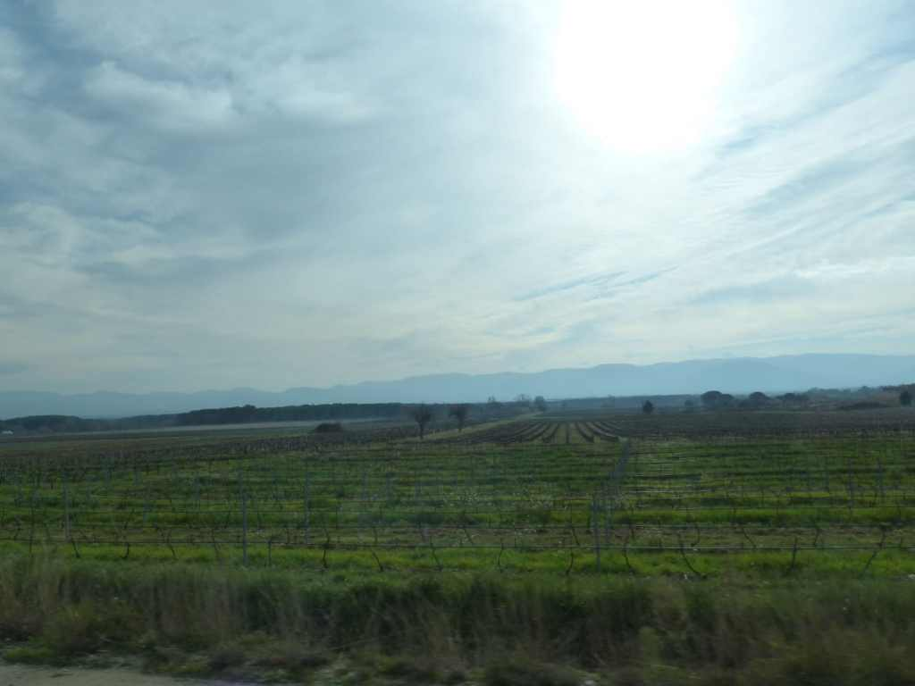 Prendre la route de Provence en janvier ... un vrai luxe hivernal.