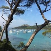 Une vue à couper le souffle sur la plage Notre Dame, entre flots bleus et sable doré.