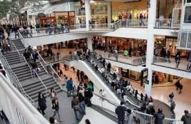 commerce-spécialisé-bilan-2017