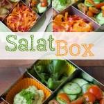 wpid-SalatBox_1-2014-08-13-20-45.jpg