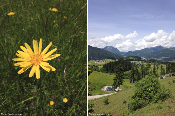 wpid-Salzburg_11-2015-07-1-07-00.jpg