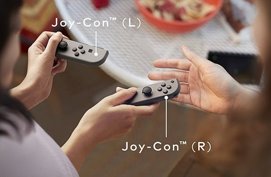 Nintendo Switch Joy Cons