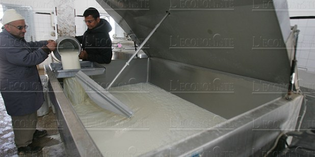 HCP analyzes dairy industry