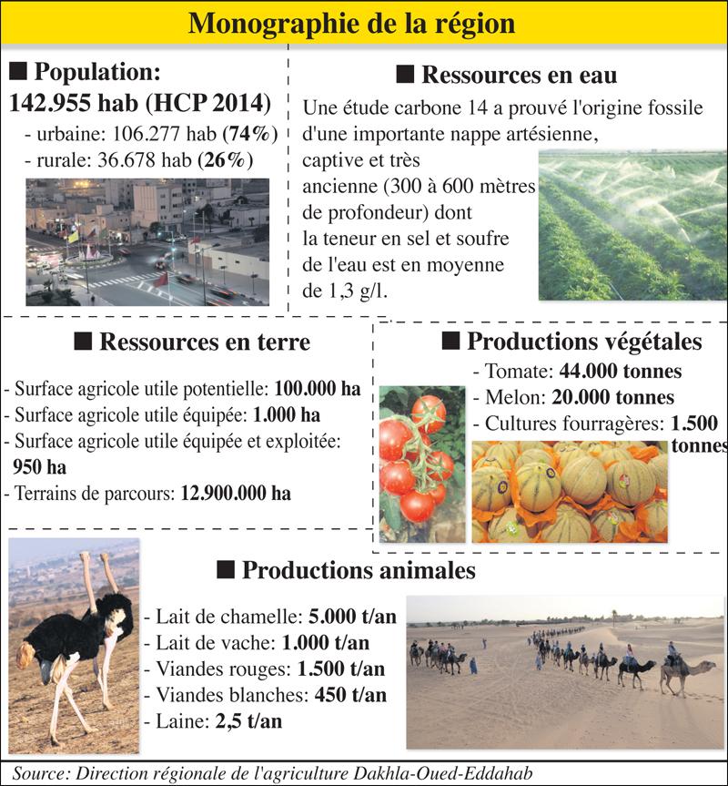 dakhla_agriculture_019.jpg