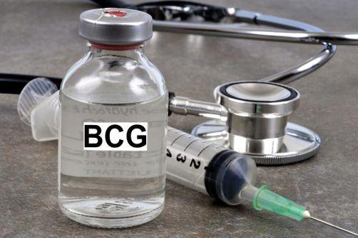 Institut Pasteur Tunis Vaccin BCG Coronavirus