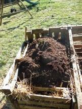 última etapa rotación compost