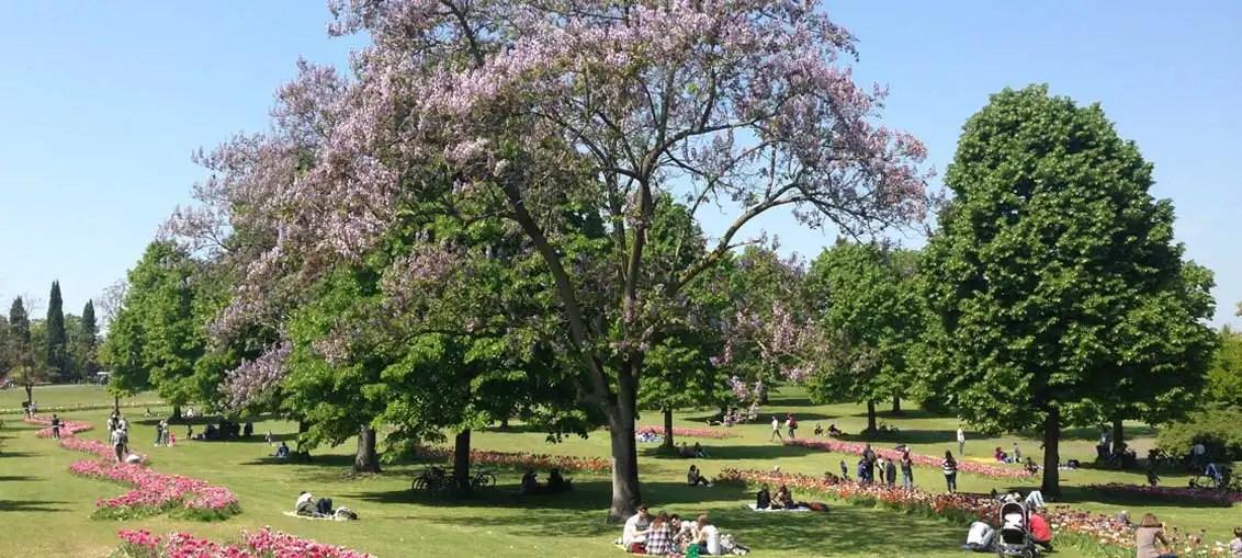 Parco Sigurtà: il giardino botanico di Valeggio sul Mincio