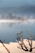 La Riserva Naturale delle Torbiere del Sebino