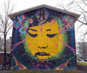 Scoprire dei murales Amtsterdam