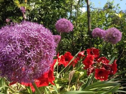 giardini-botanico-lago-di-garda