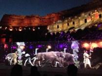sangue-e-arena-the-show-roma