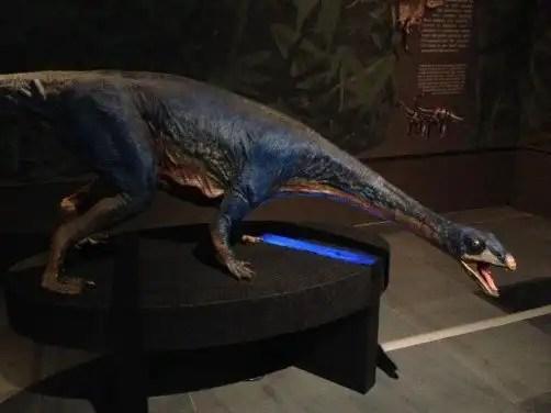 dinosauri-giganti-dall-argentina-mudec-16