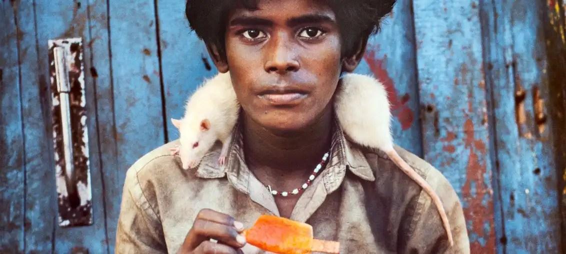 """Steve McCurry: """"Animals"""" la mostra fotografica al MUDEC di Milano"""