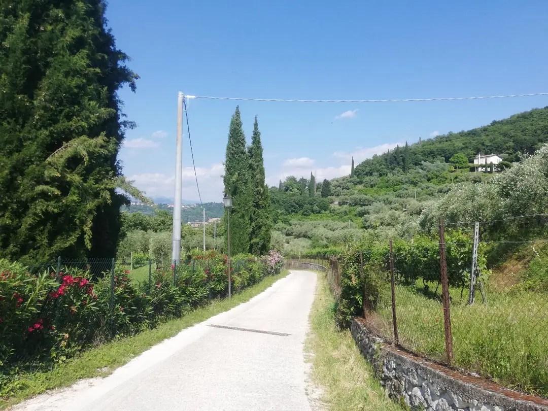 Escursione Rocca di Garda