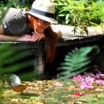 Giardini sul Lago di Garda: 10 posti belli e profumati da visitare assolutamente