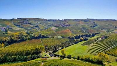 Read more about the article Cosa vedere nelle Langhe: un weekend e 11 tappe da non perdere tra Barbaresco e Barolo