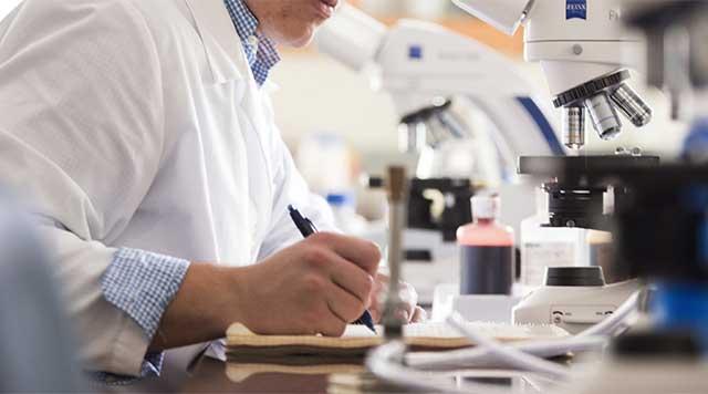Des scientifiques créent une pastille qui régénère l'émail des dents