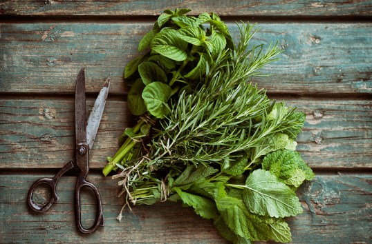 Image result for tied herbs