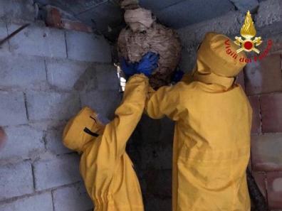 api vigili del fuoco2