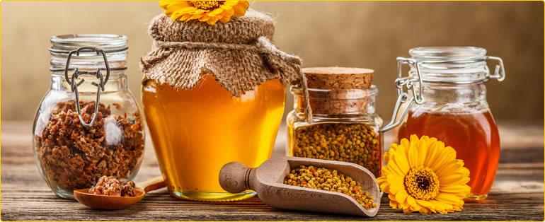 curs online de apicultura pentru incepatori