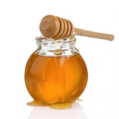 managmentul nutritiei la albine