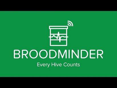 broodminder pentru apicultura moderna